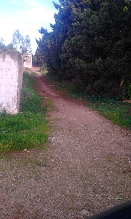 Terrain industriel Route d\'El Jadida offre Vente Terrain